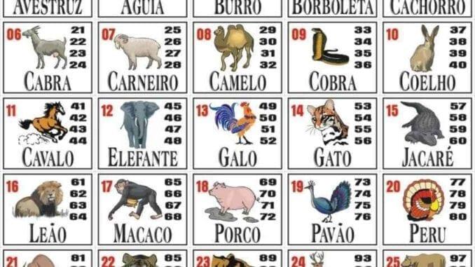 Vejas quais são as dezenas correspondentes a cada animal no jogo do Bicho e boa sorte!